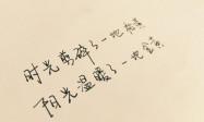"""【宝庆微视】隆回魏源老年公寓新址""""开业倒计时 奋战60天"""""""